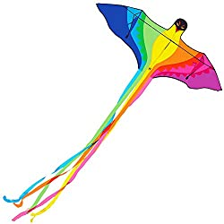 Rainbow Parrot Kite 78inch Phoenix Bird Kite with Long Tails