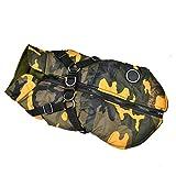 Handfly Hundebekleidung für Kleine Hunde Hundemantel Wasserdichte Winterjacke Warm Weste Hundekleidung Hundemantel Hundejacke Hundepullover Warm Winter für Kleine Hunde