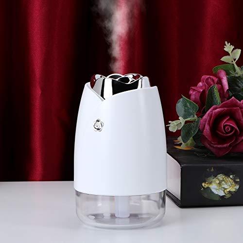 Betued Umidificatore d'Aria, umidificatore, umidificatore Spray da Tavolo Trasparente con capacità di 230 ml per nebulizzatore per Auto