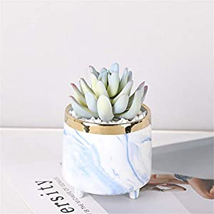 Silk Flower Arrangements ZXWCYJ Artificial Mini Potted Plants, Faux Succulents in White Ceramic Pots, for Desk, Office, Living Room, and Home Decoration