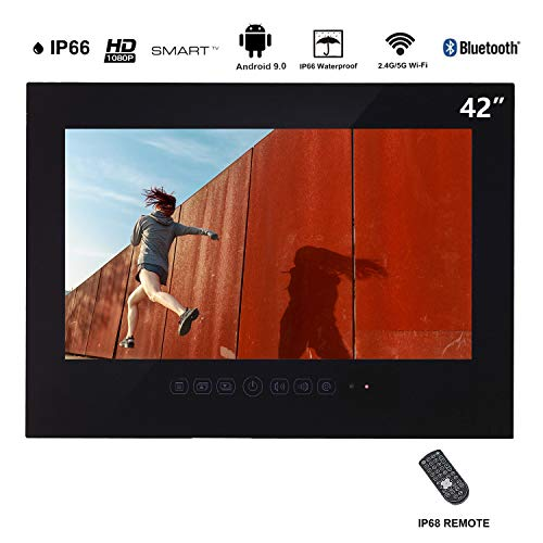 Haocrown Waterproof TV,Bathroom TV(42, Black)
