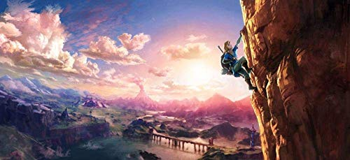 XIAOXINGXING Rompecabezas 1000 Piezas Puzzle Creativo Puzzle Colorea La Leyenda de Zelda Guerrero alpinista Juegos Infantiles Juguetes Juegos de Rompecabezas