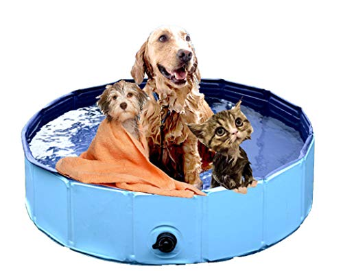 DreambuilderToy Foldable Dog Bath