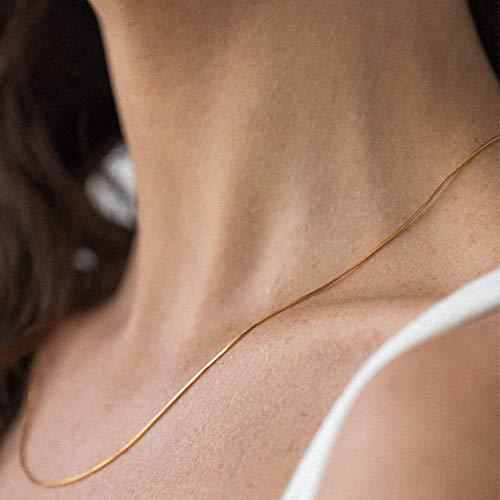 BAWAQAF Collares, Estilo Minimalista y Collares pegajosos, nicho de Damas, Collares Cortos de Cadena Sexy, Accesorios de joyería y complementos de Vestir.