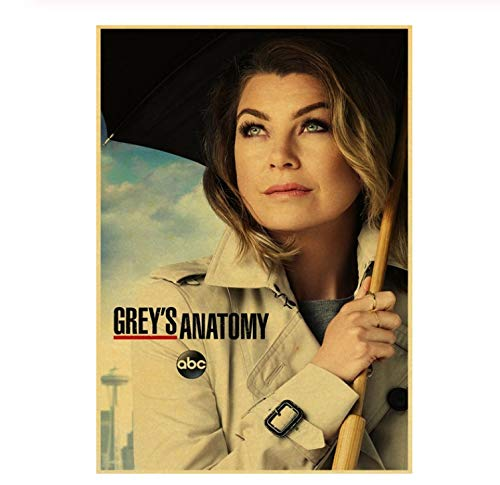 NVRENHUA Leinwand Kunst Fernsehserie Grey's Anatomy Diaries Poster Home Wohnzimmer Cafe Dekoration Malerei 50 * 70 cm Rahmenlose