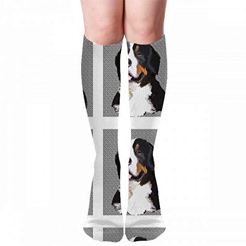 Bernese_Mountain_Dog_Quilt_Block Calcetines de compresión para mujeres y hombres Calcetines largos hasta la rodilla hasta la rodilla 50cm