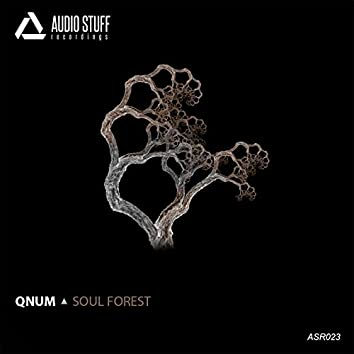 Soul Forest