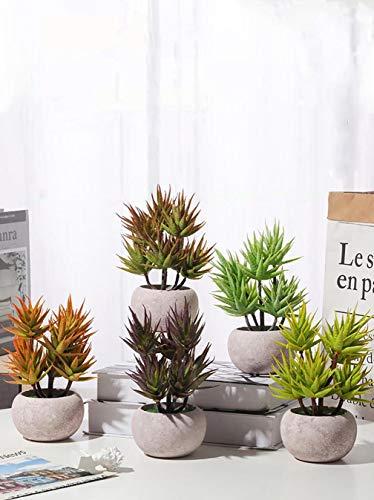 Cuisit 5er Set Künstliche Sukkulenten, Drachenfrucht, Künstlicher Bonsai im Topf, mit Pulpetopf für Home/Office Desktop-Dekoration