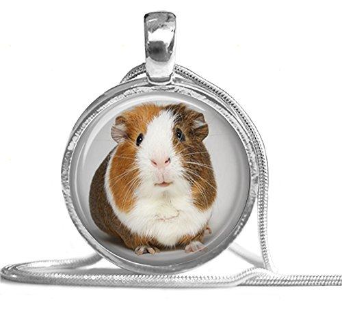 Merchandise for Fans - Halskette aus Metall, silberfarben mit Glascabochon Motiv: Meerschweinchen Porträt (05)