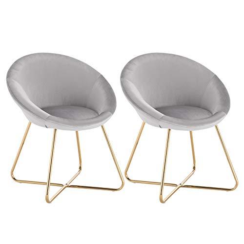 WOLTU® Esszimmerstühle BH217hgr-2 2er Set Küchenstuhl Polsterstuhl Wohnzimmerstuhl Sessel, Sitzfläche aus Samt, Metallbeine, Hellgrau