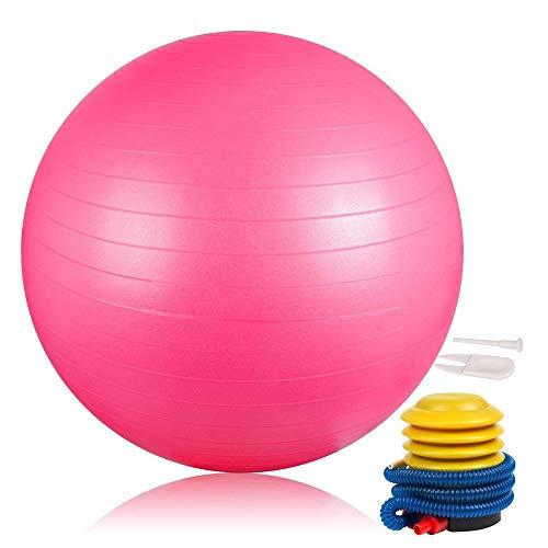 DAMIGRAM Palla per Esercizi, 65cm Anti-scoppio Antiscivolo Palla per fitness, Yoga, Pilates, Gli sport Ginnastica Equilibrio Training Ball &Birthing, Fisioterapia(Pink)