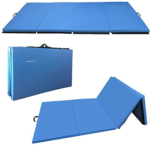 BalanceFrom GoGym All-Purpose 4'x10'x2 Extra Thick High Density Anti-Tear Gymnastics Gym Folding...