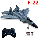 2 Channel RC Airplane, F-22 RC Plane Ready to Fly, 2.4GHz Remote Control