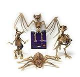 Halloween Bundle of 4 Spooky Skeleton Decorations, Includes 1 Skeleton Bat, 1 Skeleton Rat, 1 Skeleton Bird, and 1 Skeleton Spider
