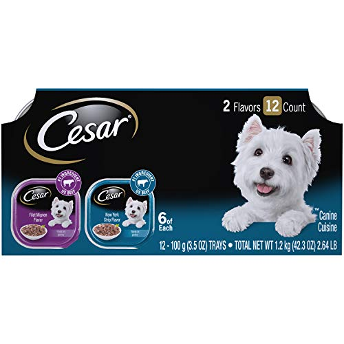 Cesar Canine Cuisine Wet Dog Food (12 Pack), Filet Mignon & New York Strip, 3.5 oz