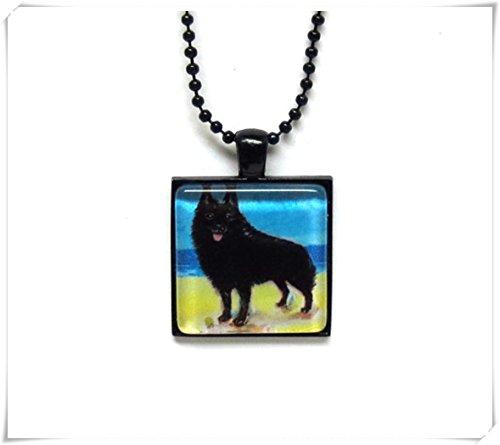 Leonid Meteor Dusche Schipperke Malerei Sommer Ozean Strand Kunst Glas Fliesen Anhänger Halskette