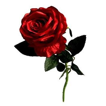 Candeia Roses (Remix)