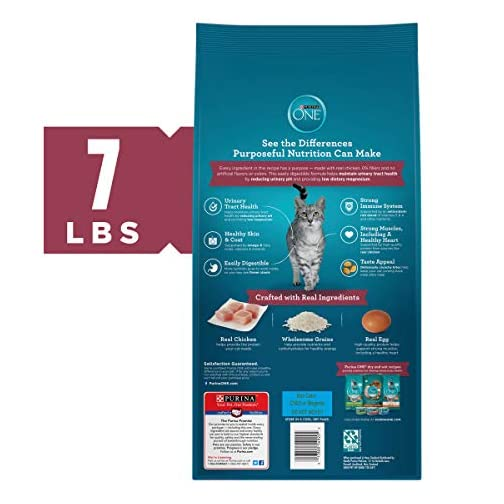 Purina ONE Cat Food 4