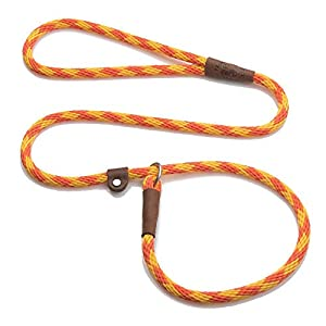 Mendota Pet Slip Leash – Dog Lead and Collar Combo – Made in The USA