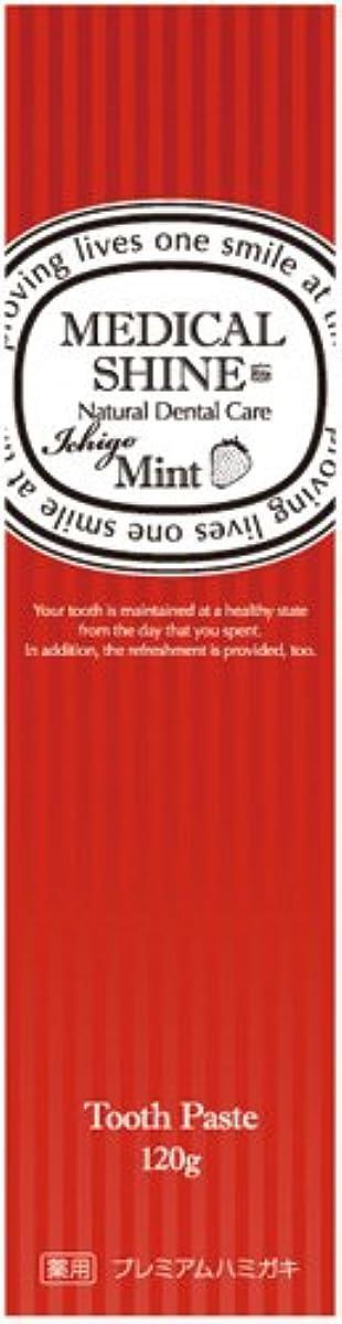 キー危険にさらされている中級メディカルシャインリッツ イチゴ 120g