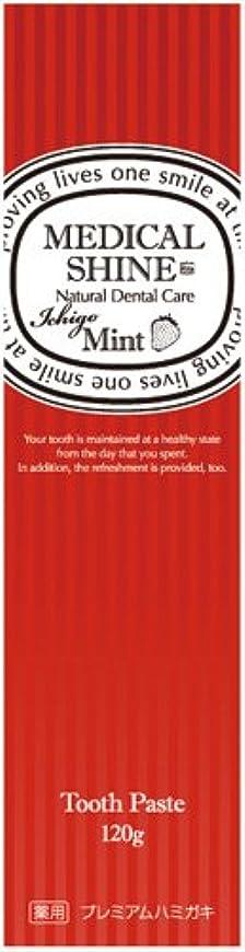 崇拝する伝染性モデレータメディカルシャインリッツ イチゴ 120g
