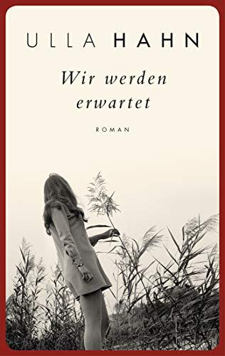 Wir werden erwartet: Roman (Die Geschichte der Hilla Palm 4)