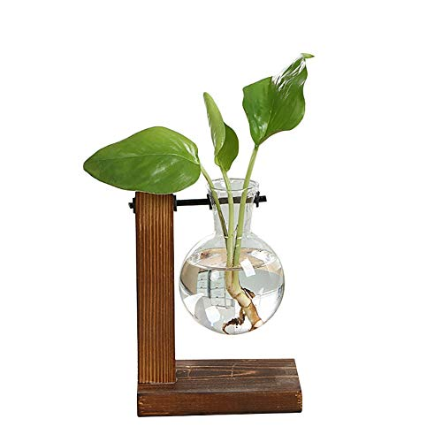 CHUJIAN Utensilios de jardinería Pots Cristal florero Madera Planter terrario de Escritorio hidropónico de Plantas Bonsai Flor macetas Colgantes Decoración (Color : C)