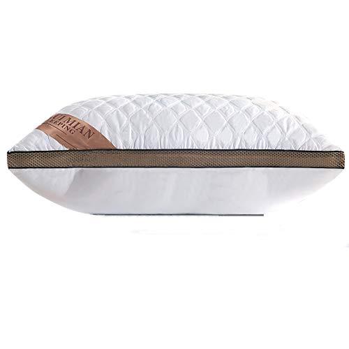 Almohada de Plumas QUANHAO, 100% algodón y algodón. Empaque 2 Almohadas de plumón de Ganso Blanco. Almohada Suave Inflable Natural de Calidad hotelera (Blanco 1 Piezas, 48x74cm)