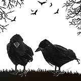 YISKY Cuervo Negra Decoración, 2 Piezas Decoración Halloween Cuervo, Fiesta De Halloween Cuervo, Cuervo de Aspecto Realista, Decoración de Halloween Prop, Fiesta Spooky Decoración para el Hogar (M1)