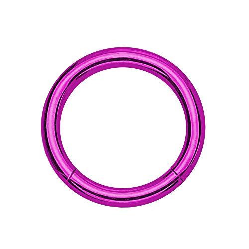 eeddoo Piercing-Ring Segment-Clicker Segment-Ring Lila Edelstahl 1,2 mm x 8 mm