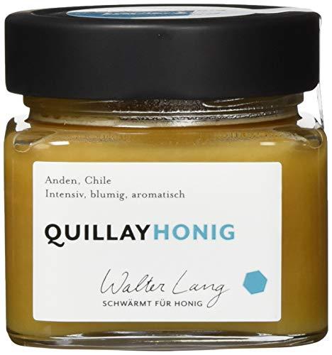 Walter Lang schwärmt für Honig Bio Quillay-Honig; Anden, Chile, 275 ml