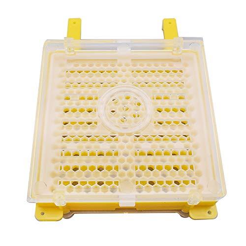 Equipo de la apicultura Incubadora de abeja apicultura Tool Kit completo de las células de la reina Reina Cría Kit sistema de cría Apicultura Cría reina Box Kit de cría Herramienta de la apicultura