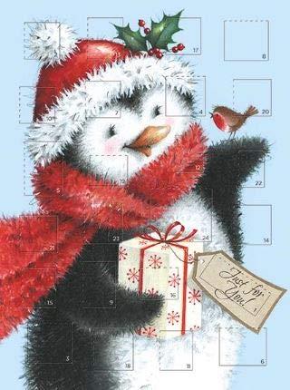 Medici kaarten schattig artistieke adventskalender kerstkaart van gewoon voor jou! Pinguïn, Robin en Gift - Geschikt voor zowel volwassenen als kinderen (MED-ACM0040)
