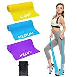 Trongle Lambony Bande Elastiche Fitness, 3 Livelli di Resistenza per Fisioterapia, Pilates...