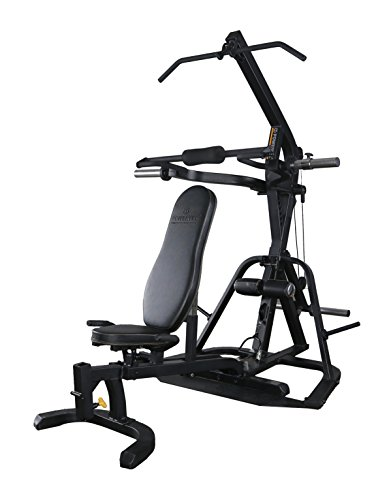 Powertec Fitness Lever-Gym Workout Bench
