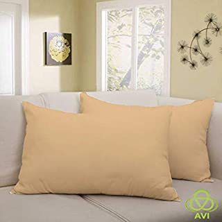 AVI Smooth Waterproof Beige Zippered Terry Cotton Pillow Protector/ Cover ,17 X 27 inch
