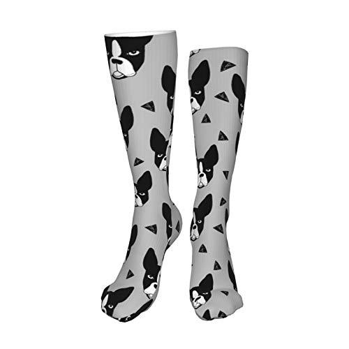 Boston Xtra - Calzini per cani taglia piccola, taglia S, colore grigio, taglia S, taglia S, taglia S, taglia S, 50 cm