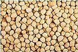 Potseed Germinación Las Semillas: Semillas orgánicas Garbanzos 90 Semilla de garbanzo no GMO