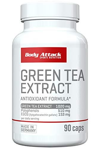 Body Attack Green Tea Extract - hochdosiert - 1200mg Grüner Tee (1 x 90 Kapseln)