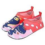 UKKD Zuecos para niños Zapatos De Agua Al Aire Libre Infantiles Descalzos De Secado Rápido De Yoga Calcetines De Buceo Zapatos De Balance Zapatos De Natación De Playa-Crown Dinosaur,32-33