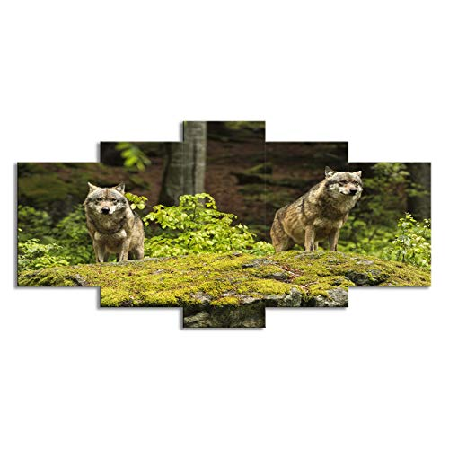 SLJZD canvas prints 5 pieces Natural Timber Wolf Canvas Prints Square Canvas Painting Micro Spray Art Oil Painting Hanging Pictures Canvas Prints For Childrens Bedroom Unframed 40 Inch