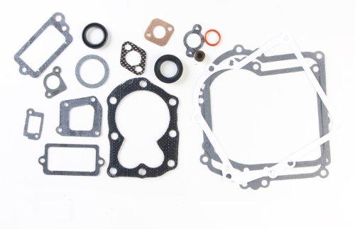 Briggs & Stratton 590777 Engine Gasket Set Replaces 794209, 699933, 298989