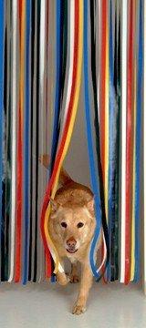 Holland Plastics Original Brand Robuste Fensterblende, Fliegenschutz, Streifenblende, Türblende - Mehrfarbig (100cm breit)