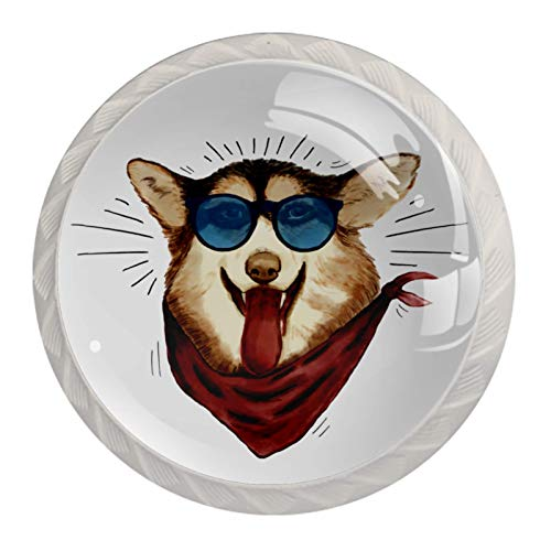 AITAI Perros redondos para armario con gafas de sol, 4 tiradores