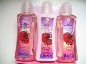Bath and Shower Apple Pomegranate Scent 4 Piece Set with Travel Pouch by April Bath & Shower