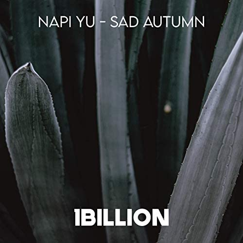 Napi Yu