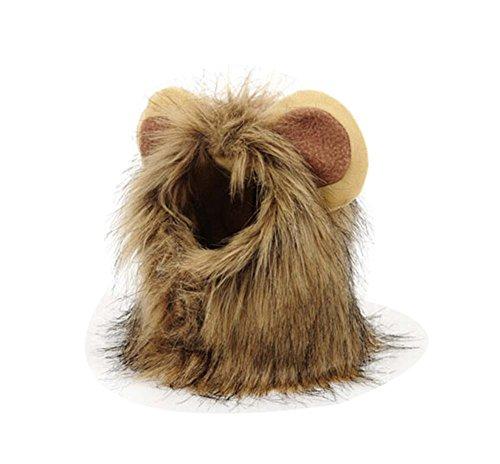 Lustig Der Löwe-Form-Hut für Haustiere, Schön