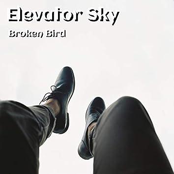 Elevator Sky