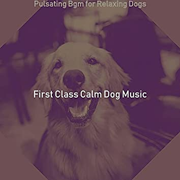 Pulsating Bgm for Relaxing Dogs