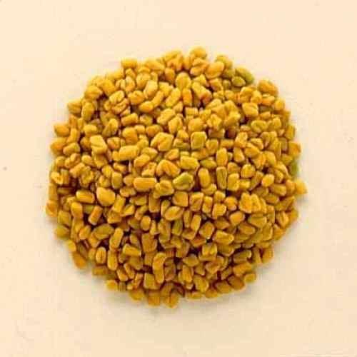 Tradico Super Agri Green Methi Desi Mota beej 1 kg Samen Packung (10000 +++ Samen) zur Aussaat